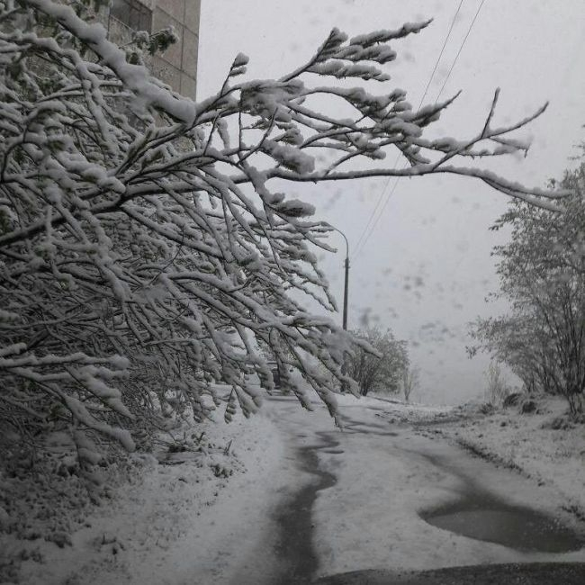 Russia Hit by Snow Today [photos, video]