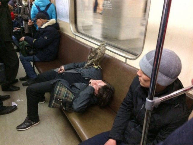Assorted Photos from Russia [44 photos]