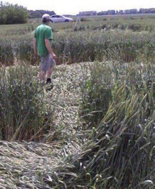 Very Russian Crop Circle