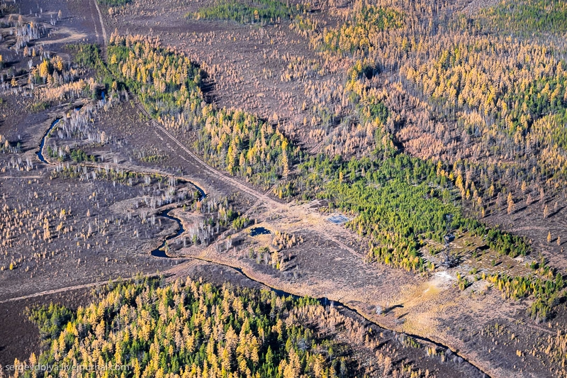 Autumn colors of Yakut taiga from a helicopter