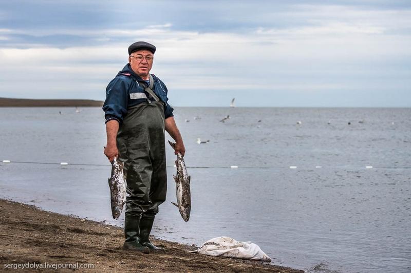 северная рыбалка бесплатно