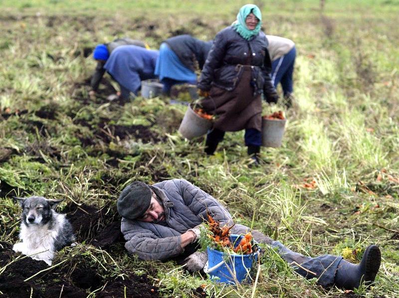 belarus - photo #46