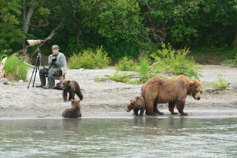Close to the Bears