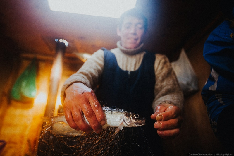 Fishing for Omul