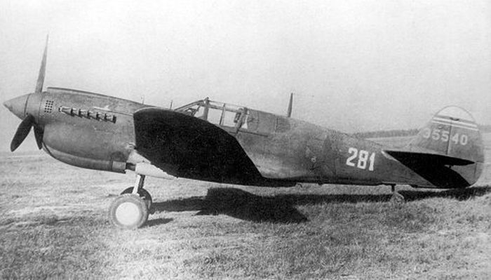 """How the old WW2 """"Kittyhawk"""" plane  was lifted  from a swamp (22 photos)"""