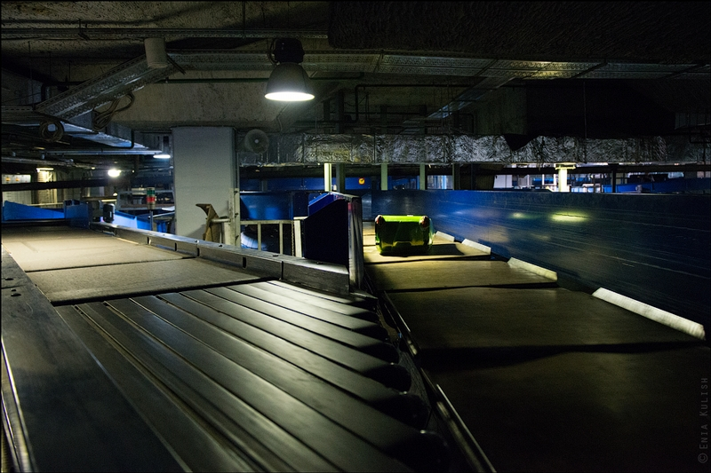 Sorting Luggage in Moscow Domodedovo Airport