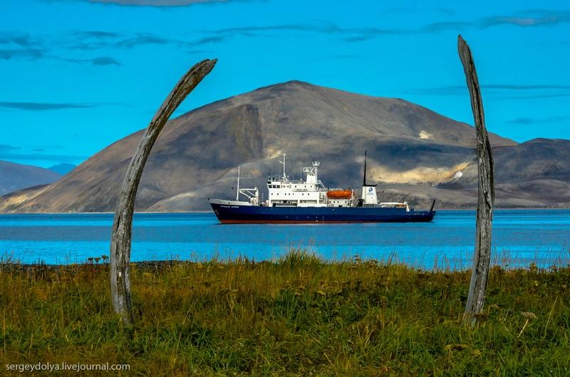 Journey to Wrangel Island