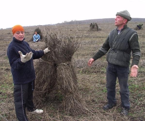Russian Hemp Growers