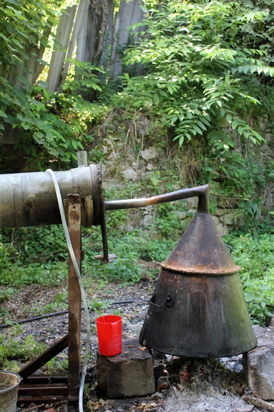 The Production of Delicious Mulberry Vodka