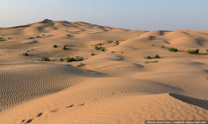 Sands of the Astrakhan Barkan