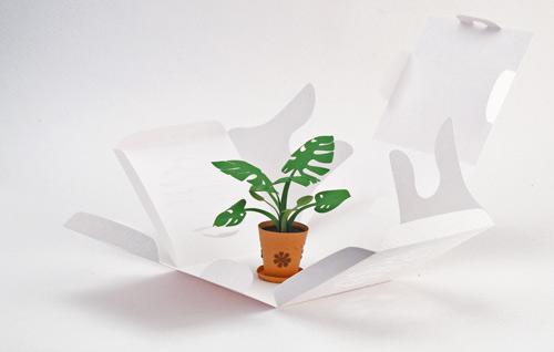 DIY Paper flower 2