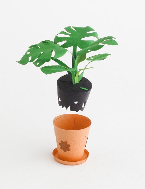 DIY Paper flower 4