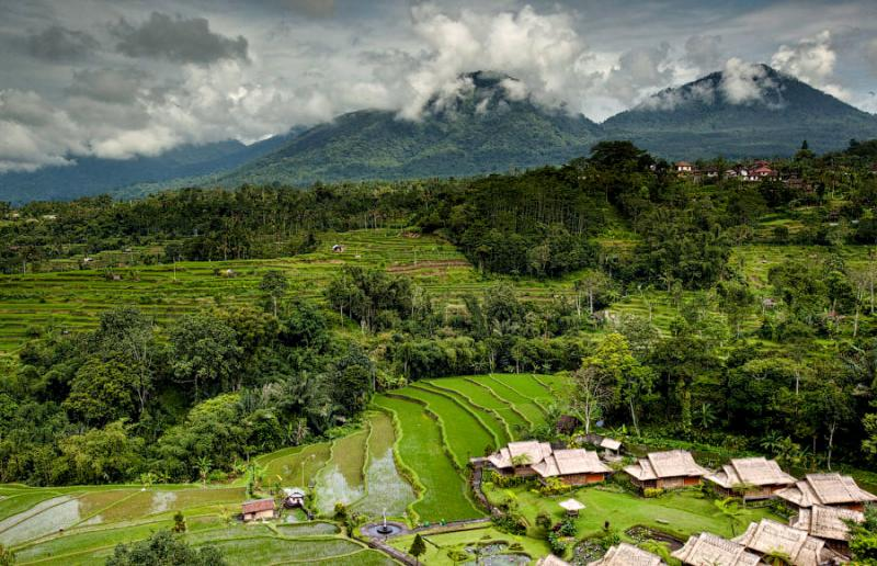 Paradise Terraces of Bali 10