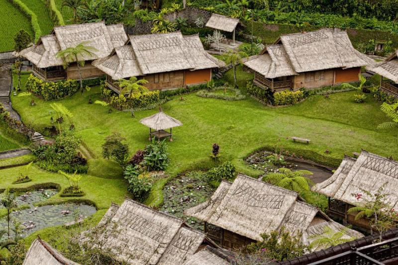 Paradise Terraces of Bali 12