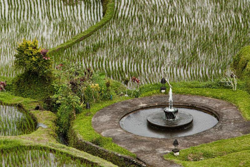 Paradise Terraces of Bali 15