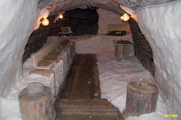 Russian permafrost museum  26