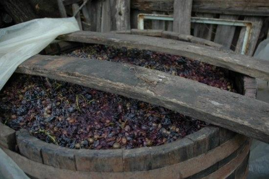 """In Vino Veritas!"" or How to Make Home-Made Wine"