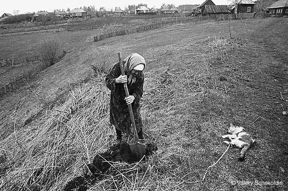 Pictures Of Photographer Shchekoldin 21