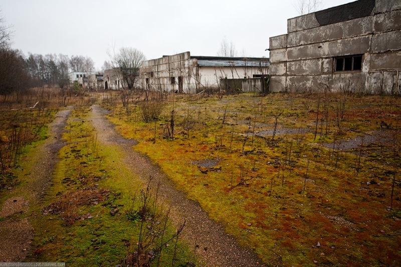 Russian abandoned pig city 15