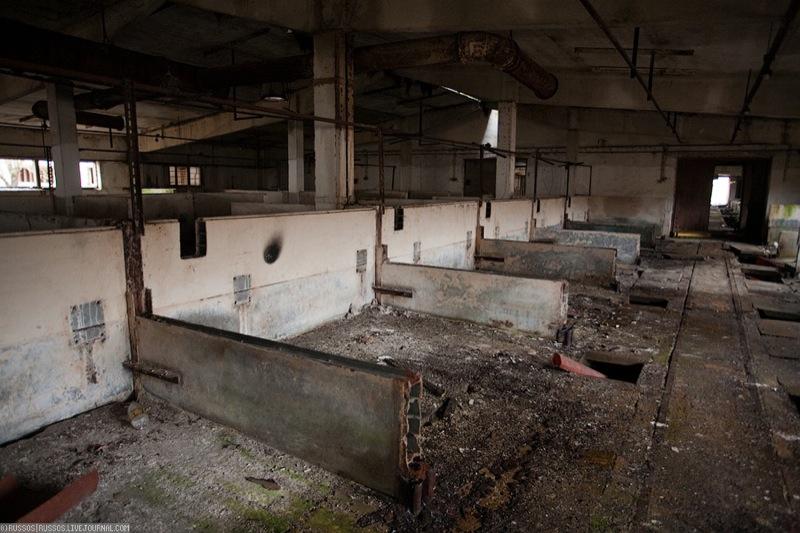 Russian abandoned pig city 19