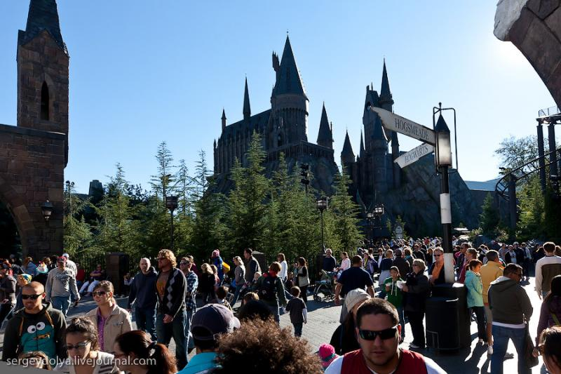 Potter 5