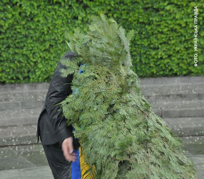 President of Ukraine Attacked By a Wreath 3