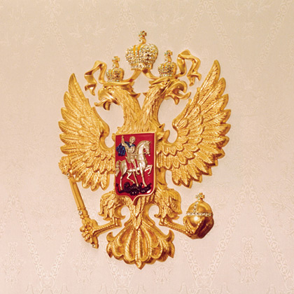Plane of the Russian President 14