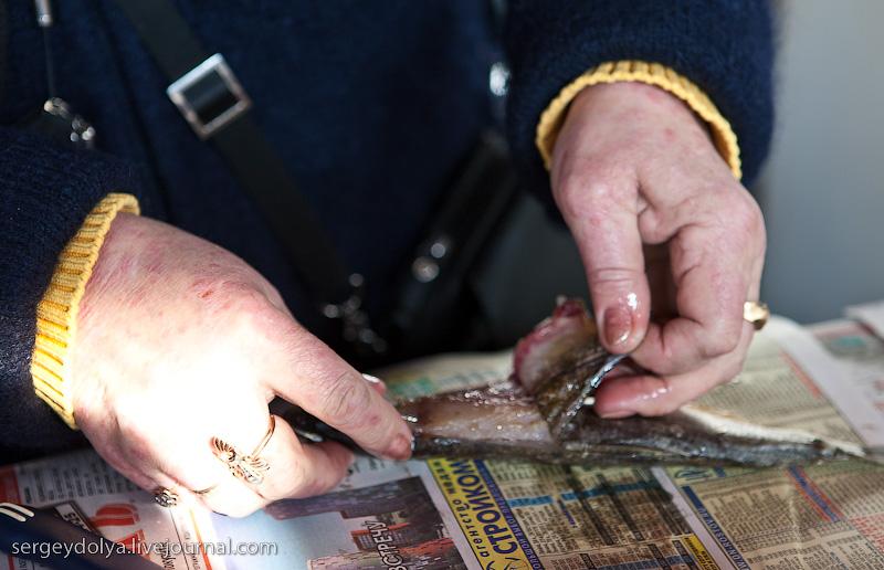 Russian city Rostov, fish market there 16