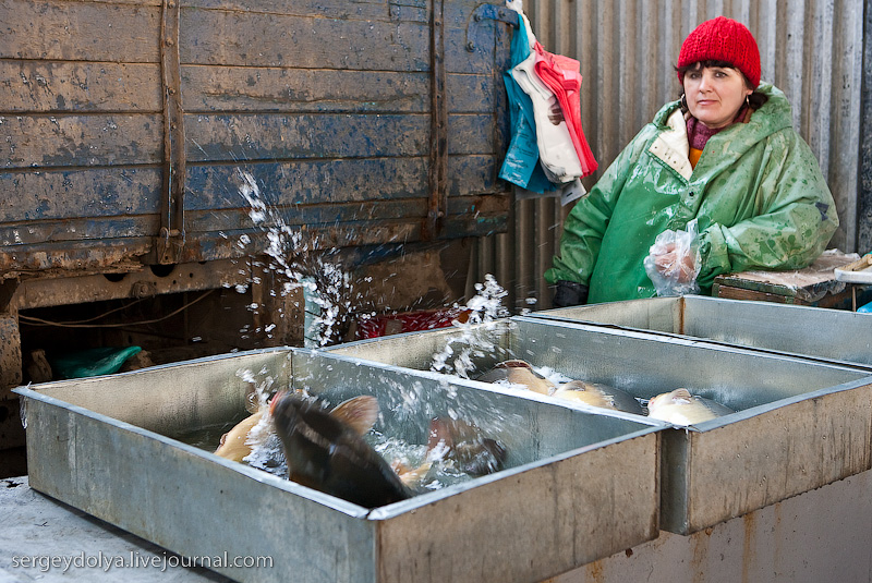 Russian city Rostov, fish market there 4