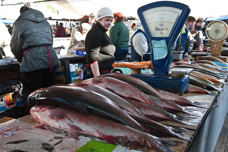 Russian city Rostov, fish market there 7