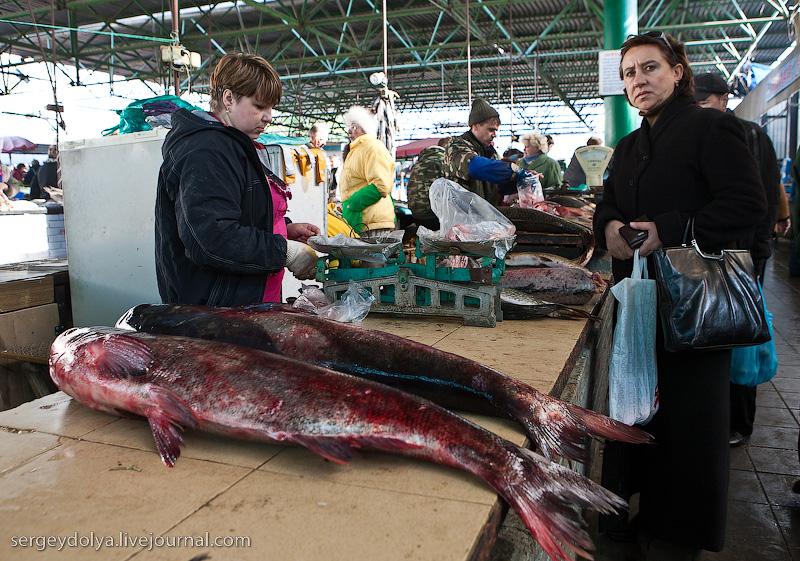 Russian city Rostov, fish market there 8