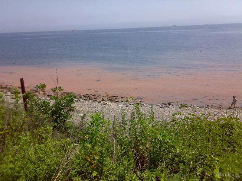 Russian beach 4