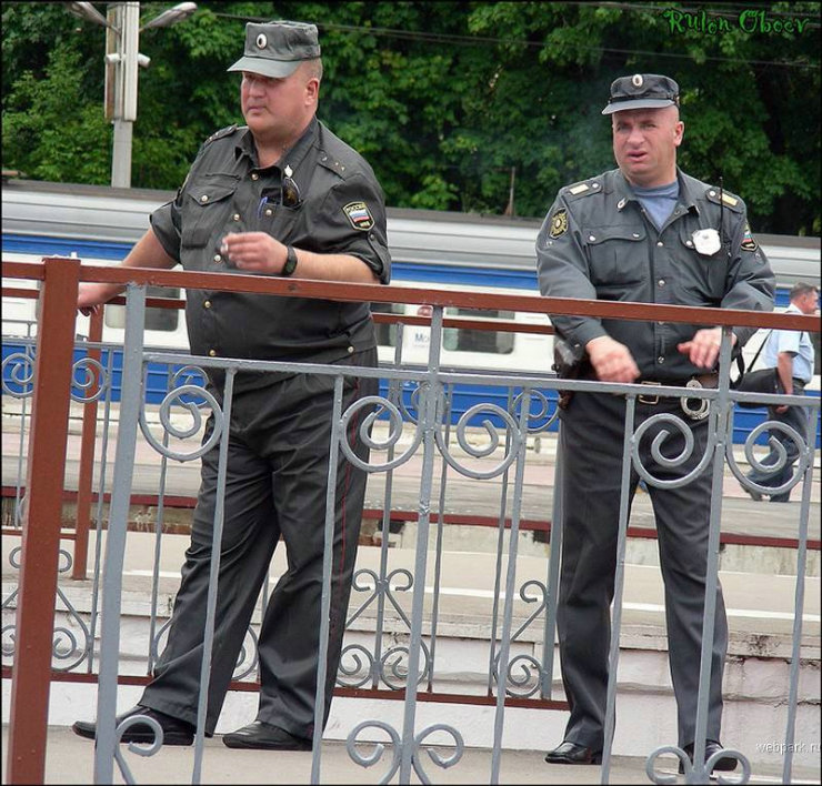 types of russian policemen by rulon oboev 16