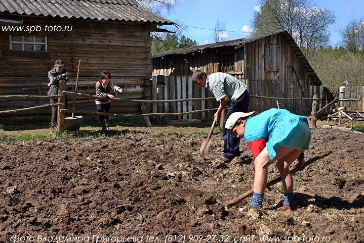 Russian village 35