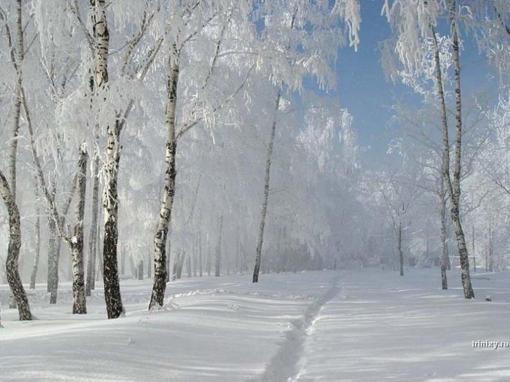 Russian nature in winter 1