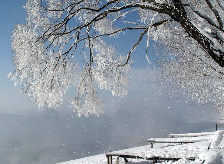 Russian nature in winter 10