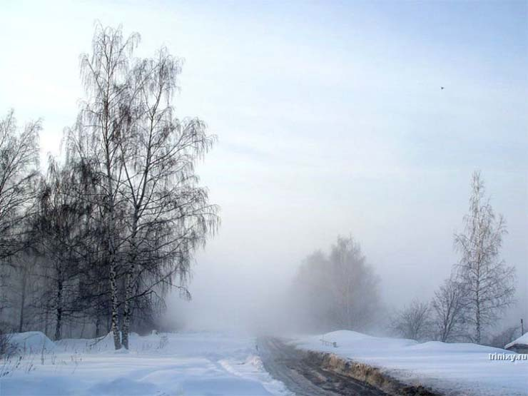 Russian nature in winter 14