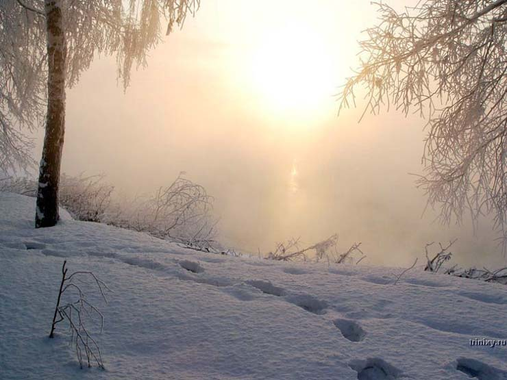 Russian nature in winter 18
