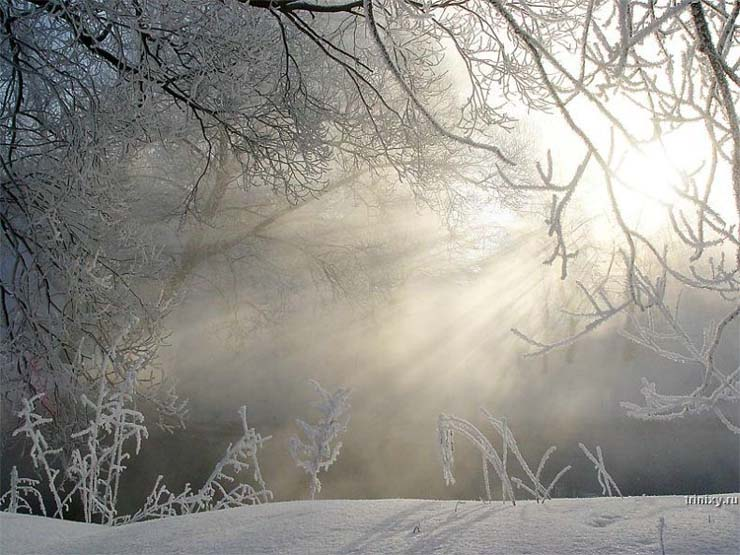 Russian nature in winter 21