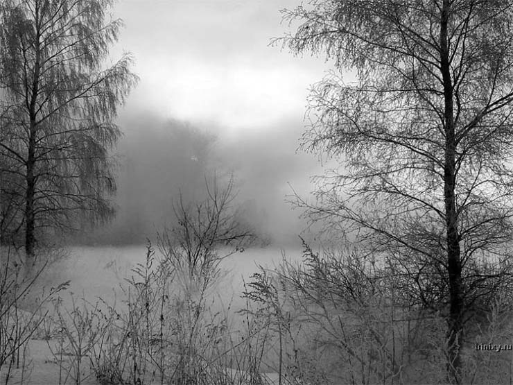 Russian nature in winter 23