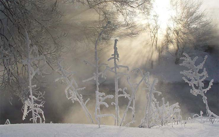 Russian nature in winter 30