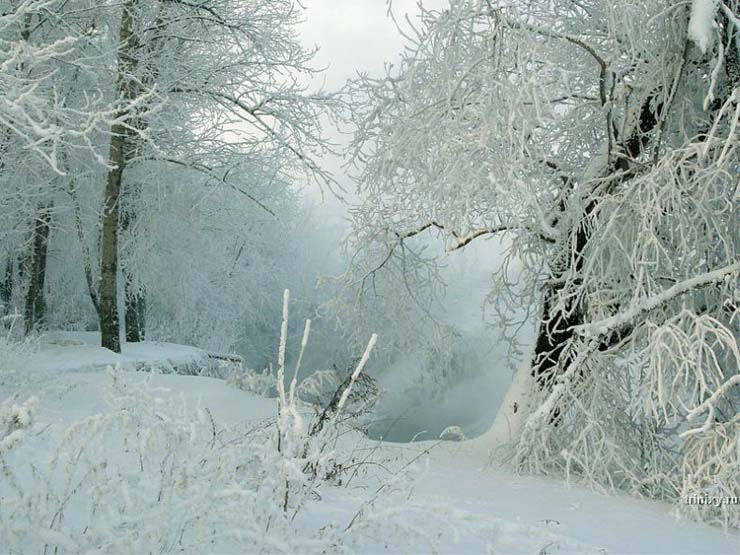 Russian nature in winter 31