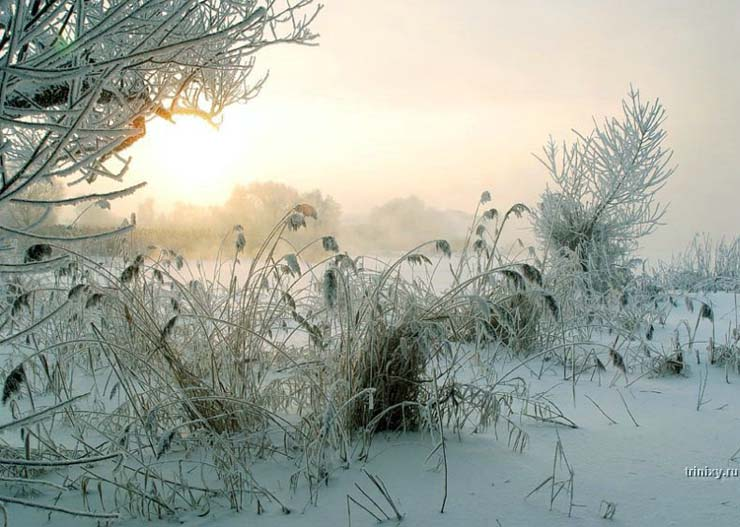 Russian nature in winter 4