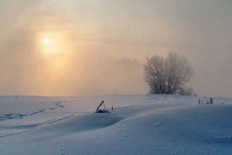 Russian nature in winter 5