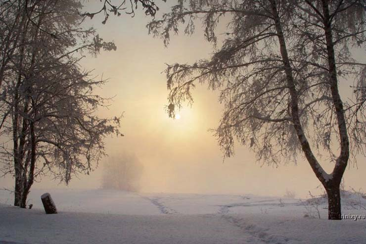 Russian nature in winter 6