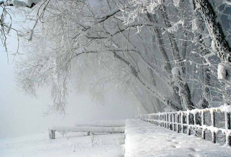 Russian nature in winter 8
