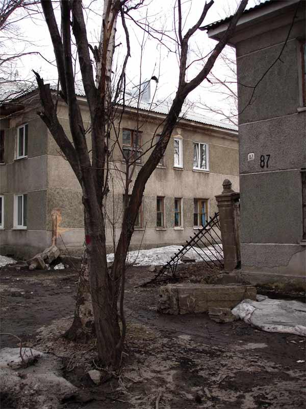 Russian Sakhalin 82
