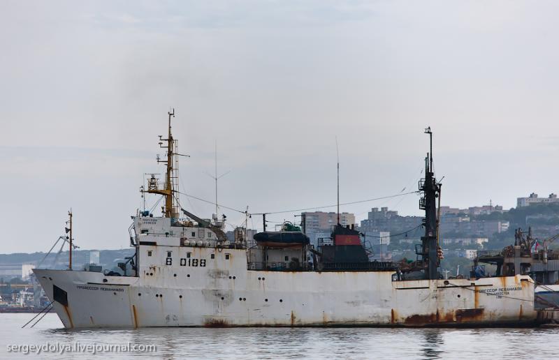 Ships of Vladivostok 15