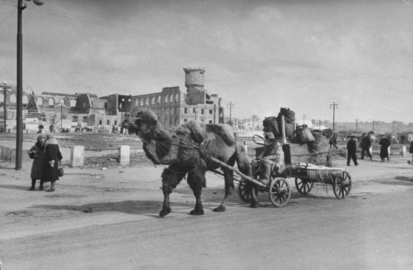 Soviet Means of Transportation