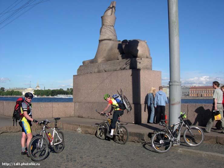 Sphinx in St. Petersburg 8
